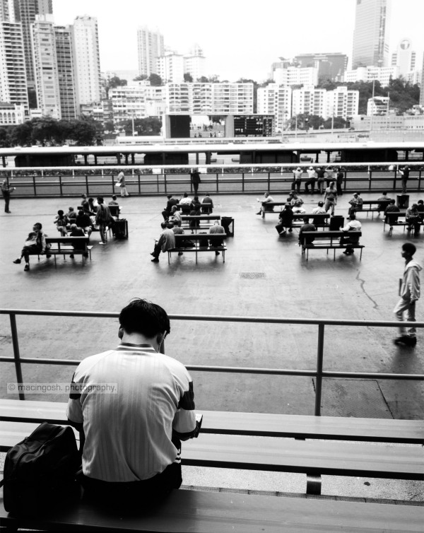 Sha Tin racecourse, Hong Kong, macingosh photographie