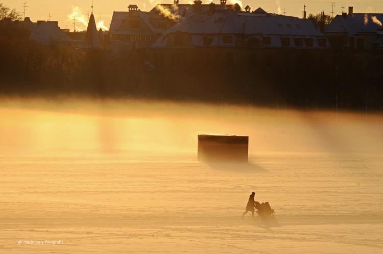 theresienwiese, muenchen, nebel, morgen